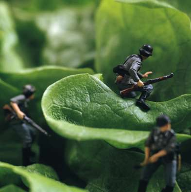 Miniature Food Fights - Pierre Javelle & Akiki Ida Create Deliciously Edible War Zones