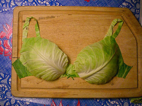 The Cabbage Bra is Edible Support