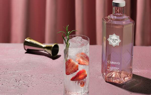 15 Refreshing Gin Alternatives