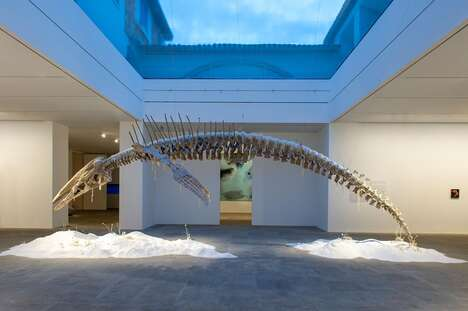 Sub-Aquatic Exhibitions