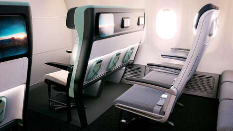 Disability-Friendly Aircraft Seats