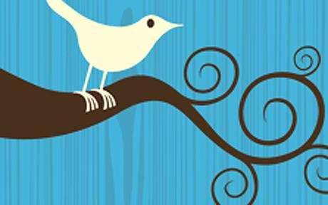 Social Site Lingo