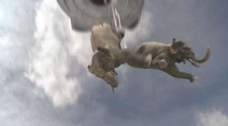 Bungee Jumping Elephants