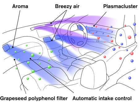 Automotive Aromatherapy
