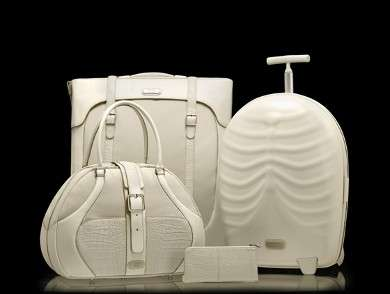 Skeleton Luggage by Alexander McQueen
