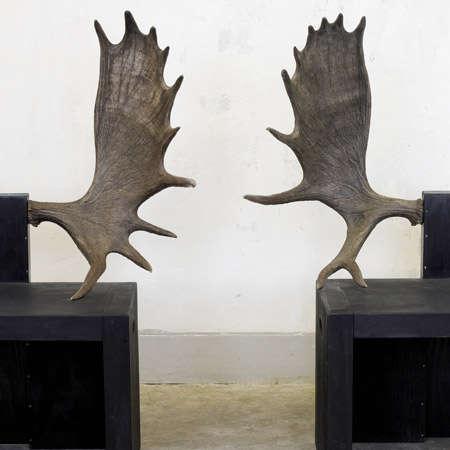 Wildlife Seating