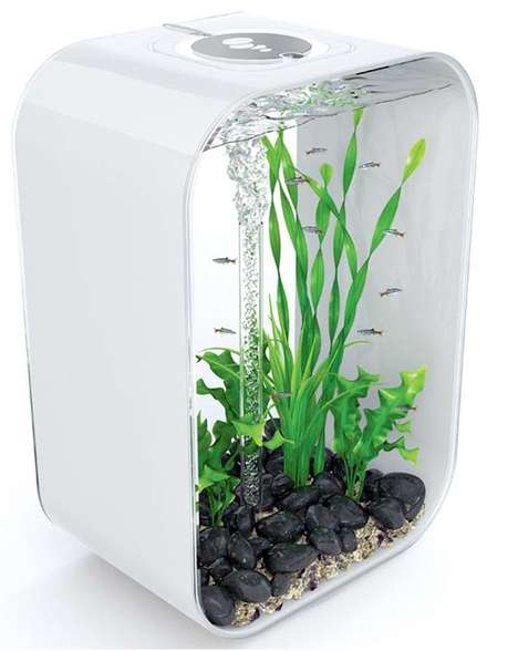 Fashion Fish - BiOrb Brightens Your Home With Hip Aquarium Design
