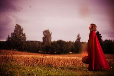 Fairytale Forestography