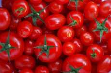 15 Tomato-Based Innovations