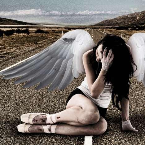 Fallen Angel Photography