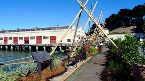 Bamboo Biofilter Teepees