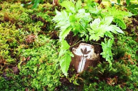 Shoe Plantvertising