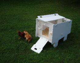 Urban Hen Houses