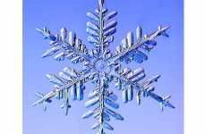 11 Sharp Snowflake Creations