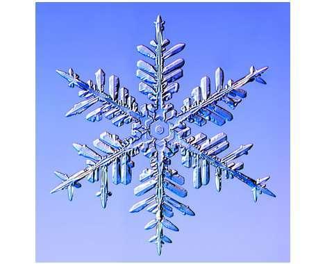 11 Sharp Snowflake Creations