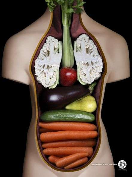 Vegetable Vitality Ads