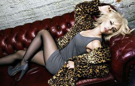 28 Leopard Features