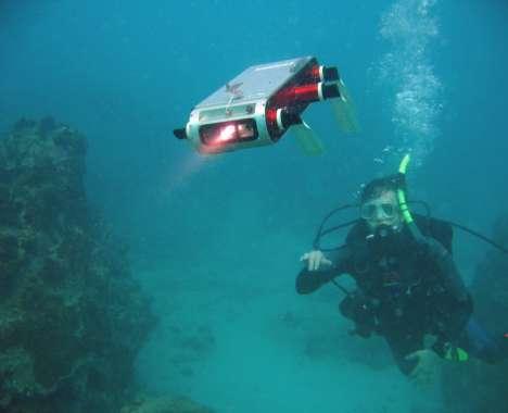 23 Amphibious Finds