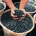 Detoxifying Fruit