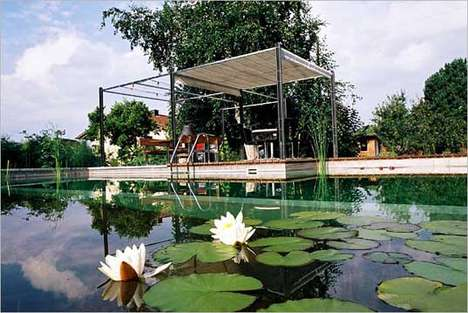 Self-Cleaning Swimming Sanctuaries - Chemical Free Swimming Pool Ponds are Eco Friendly