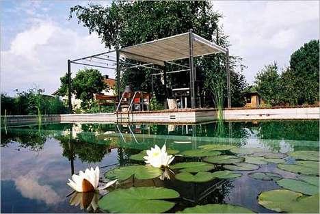 Self-Cleaning Swimming Sanctuaries