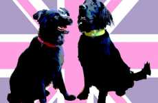Custom Designer Dog Collars by Holly & Lil