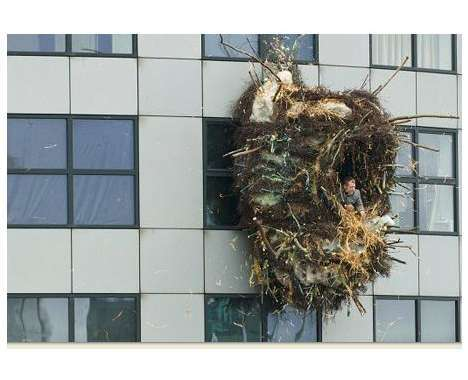 26 Comforting Nests