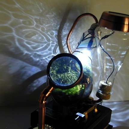 Steampunked Terrariums