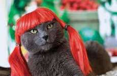 Preposterous Pet Pictures - Glamourpuss, the Enchanting World of Kitty Wigs