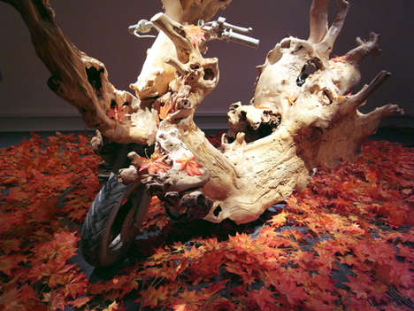 Tree Trunk Cycles
