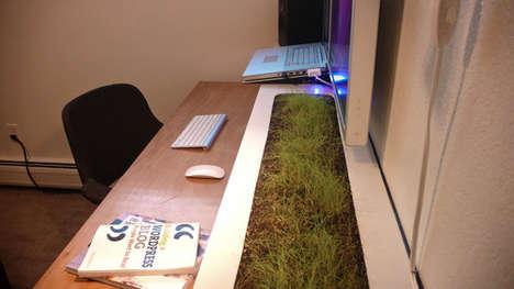 Living Desk Gardens