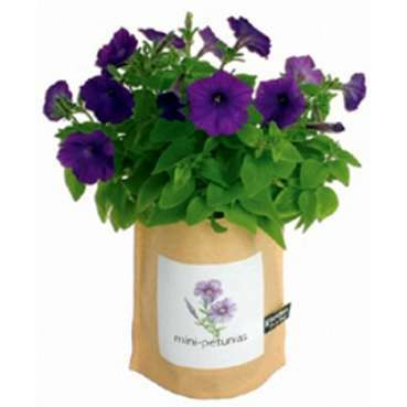47 Green Thumb Gifts