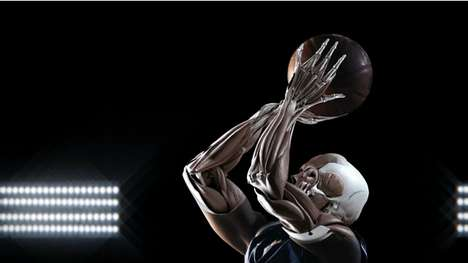 Anatomical Athletes