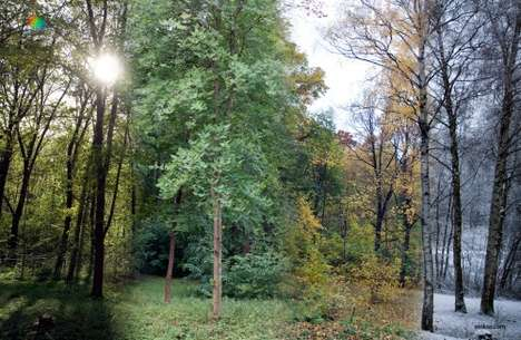 Timelapse Seasons
