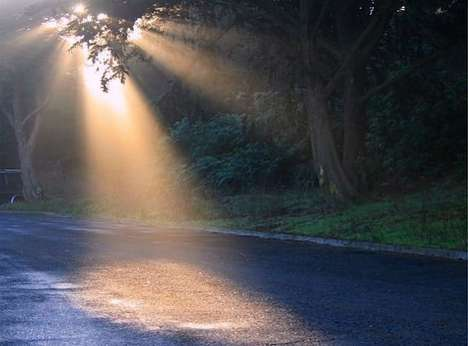 Crepuscular Ray Photography
