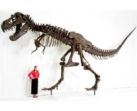 55 Prehistoric Finds