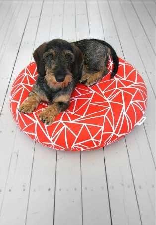 Dashing Dog Beds