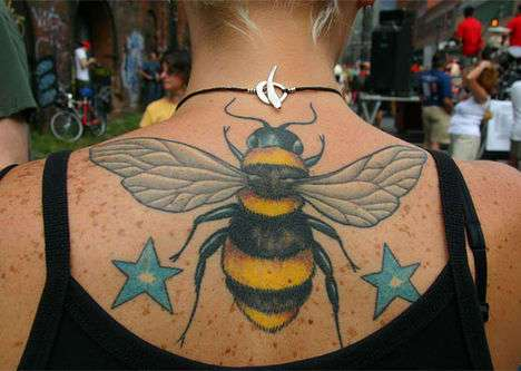 59 Bee-Autiful Bee and Honey Finds