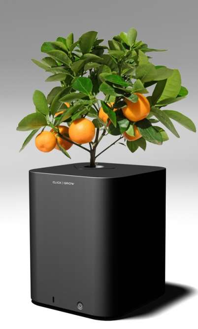 Programmable Planters