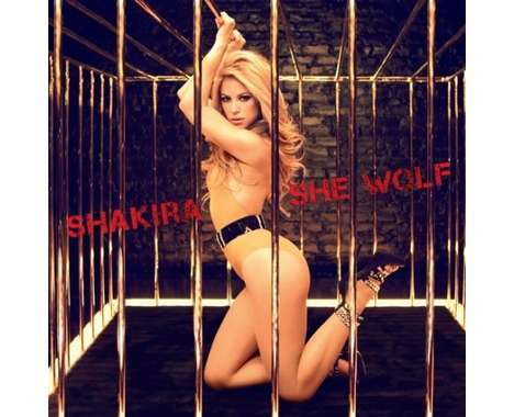 15 Spicy Shakira Innovations