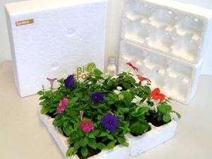 Eco Styrofoam Replacements