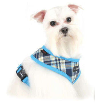 The Comfortable and Fashionable Puppia Soft Collars