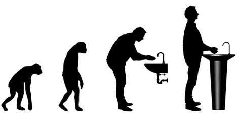 Evolutionary Washbasins