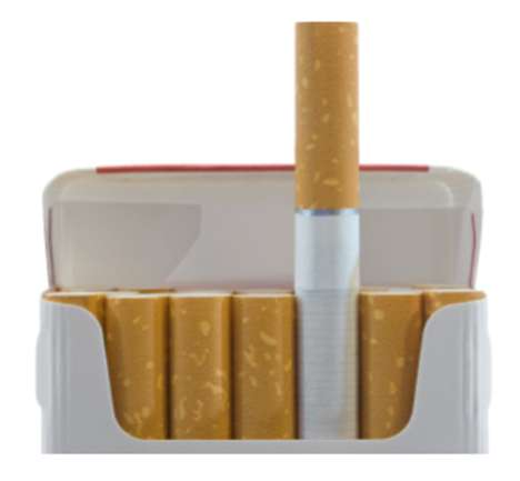 Biodegradable Cigarette Butts