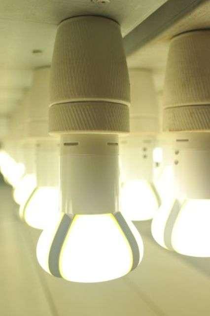 Eco Lighting Contests