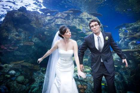Underwater Wedding Portraits