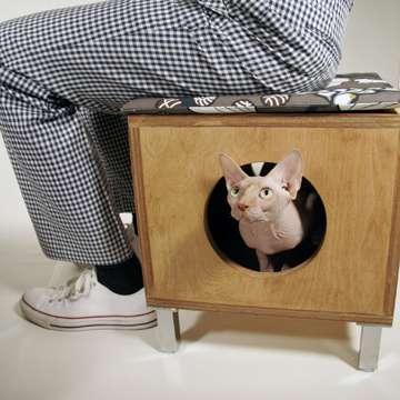 Disguised Pet Housing