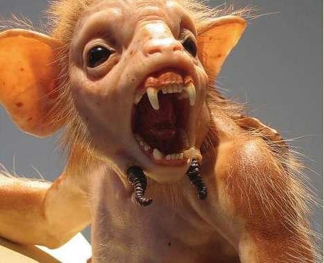 50 Strange Animal Art Innovations