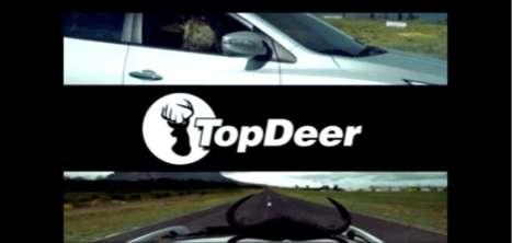 Car Show Spoof Ads