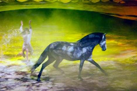 Fantastical Horse Shows